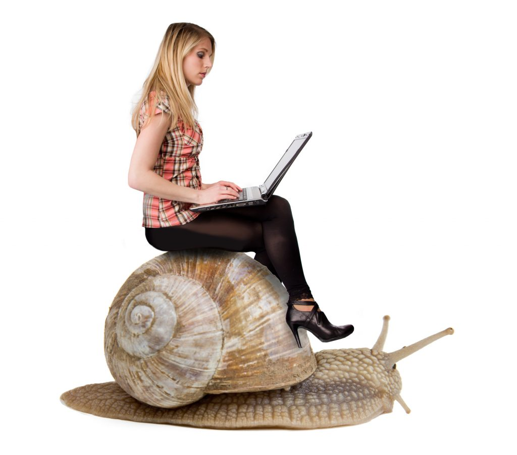 lady sitting on a snail working on a laptop